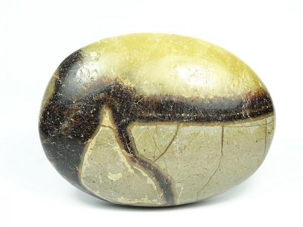 Septaria Kamień do masażu 87