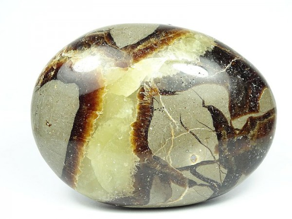 Septaria Kamień do masażu 98