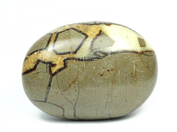 Septaria Kamień do masażu 104