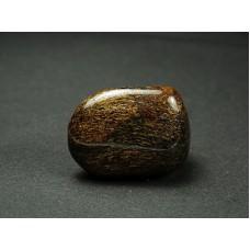 Bronzyt Szlifowany 549