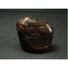 Bronzyt Szlifowany 582
