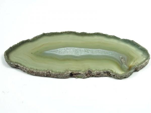 Agat Plaster 896