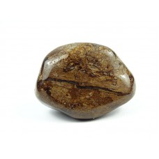 Bronzyt Szlifowany 538