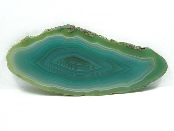 Agat Plaster 447